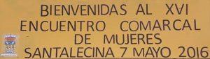 Lee más sobre el artículo XVI Encuentro de Asociaciones de Mujeres del Cinca Medio en Santalecina