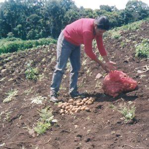 Cooperación con Nicaragua desde 1999